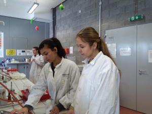 Alchymie a tajemství lidského mozku v Dolní oblasti Vítkovic