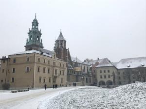 Wawel Krakov